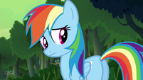 Rainbow looking back to her friends S4E04