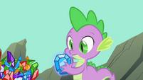 Spike gift from Rarity S01E19