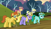 The pegasi celebrating S2E22