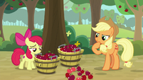 AJ and Apple Bloom look at dropped apples S9E10