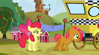 Apple Bloom --I mean obviously-- S3E8