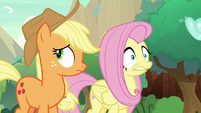 Fluttershy and Applejack hear a sound S8E23