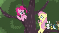 """Pinkie """"There's still other things"""" S5E11"""