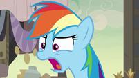 "Rainbow Dash ""sunk into the ground!"" S7E18"