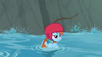 Rainbow Dash floating down the stream S8E9