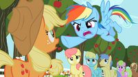 Rainbow Dash pointing S02E15