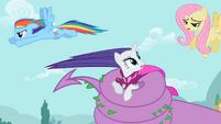 Rarity & Rainbow Dash help is here S2E10