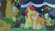 S07E13 Pear Butter decyduje się pozostać w Ponyville