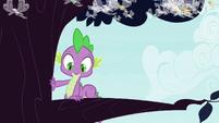 Spike climbs onto tree branch S4E16