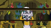 Zecora Shelf Empty S2E6