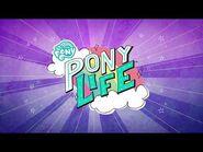 My Little Pony- Pony Life - Intro (Korean)