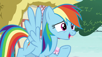 """Rainbow """"looking up to anypony else"""" S8E20"""