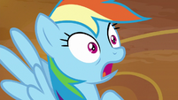 Rainbow stunned by Sombrafied Wonderbolts S9E2