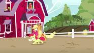 S05E17 Applejack i Apple Bloom bawią się razem