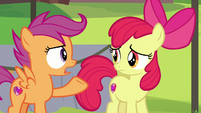 Scootaloo -we can't let Rumble quit camp- S7E21