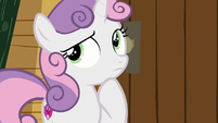 Sweetie Belle thinking for a minute S7E21