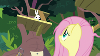 Angel grumbling down at Fluttershy S9E18