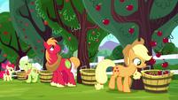Applejack sees apples fall in the bucket S8E18