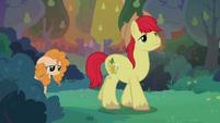 Bright Mac leads Pear Butter to edge of apple farm S7E13