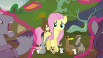 """Fluttershy """"if not for yourselves"""" S5E23"""