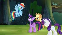 Rainbow Dash -I spotted the house- S4E04