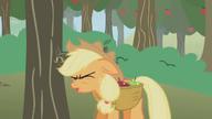 S01E04 Applejack zderza się z gałęzią