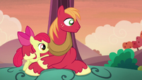 Apple Bloom and Big Mac hear Granny Smith S5E17