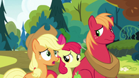 """Applejack """"anythin' else you can tell us"""" S7E13"""