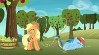 Applejack catches Rainbow with her lasso S8E5