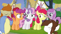 Cutie Mark Crusaders unsure S4E15
