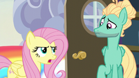 """Fluttershy """"you can't just fly in"""" S6E11"""