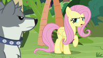 """Pegasus Angel """"the point is..."""" S9E18"""