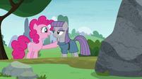 "Pinkie Pie ""he's a rock!"" S8E3"