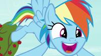 """Rainbow Dash """"in the history of Equestria!"""" S8E5"""