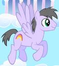 Rainbow Swoop