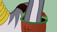 Zecora dipping tail into basket S2E06