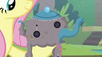 Fluttershy's poorly-made elephant tea cozy S8E4