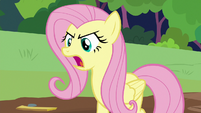 Fluttershy -the care of animals!- S7E5