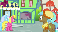 Ponies attracted by Mr. Breezy's window display S7E19