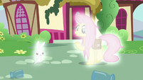 Angel and Fluttershy start to glow S9E18