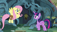 Fluttershy -it's just like the illustrations- S7E20