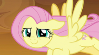 Fluttershy smiling confidently at Rainbow S9E2
