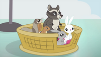 Angel and animals in animal basket MLPS3