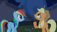 Applejack sees tapestry moving S4E03