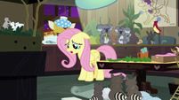 "Fluttershy ""I put my trust in the wrong ponies"" S7E5"