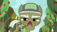 """Pest pony """"if you want to learn anything"""" S5E04"""