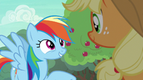 """Rainbow Dash """"I've just got one question"""" S6E18"""