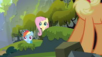 Rainbow Dash & Fluttershy wide eyes S3E9