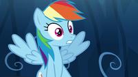 Rainbow Dash in complete shock S9E2
