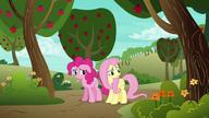 S06E18 Fluttershy zwierza się ze swoich zmartwień